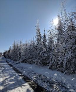 Salmon Lake Road