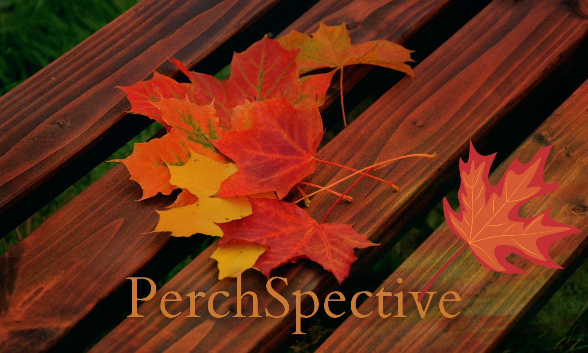 PerchSpective